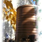 Photo of coffee can bird feeder