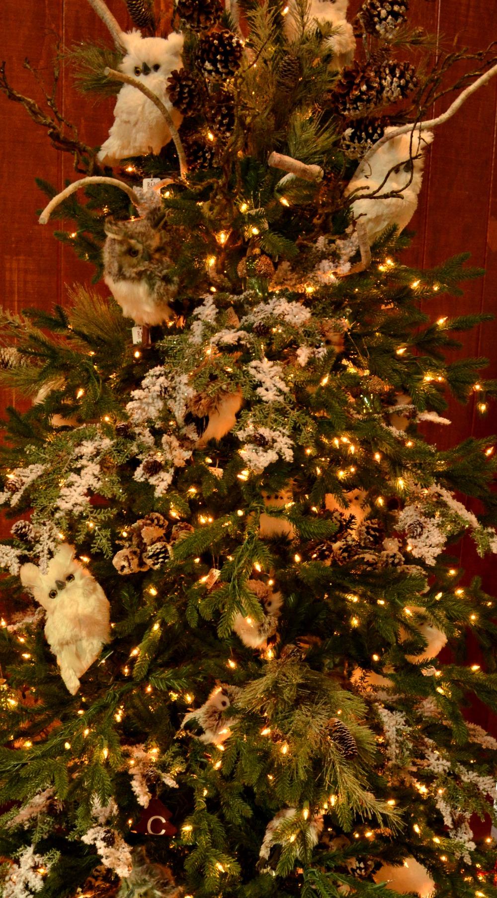 owl be home tree 2