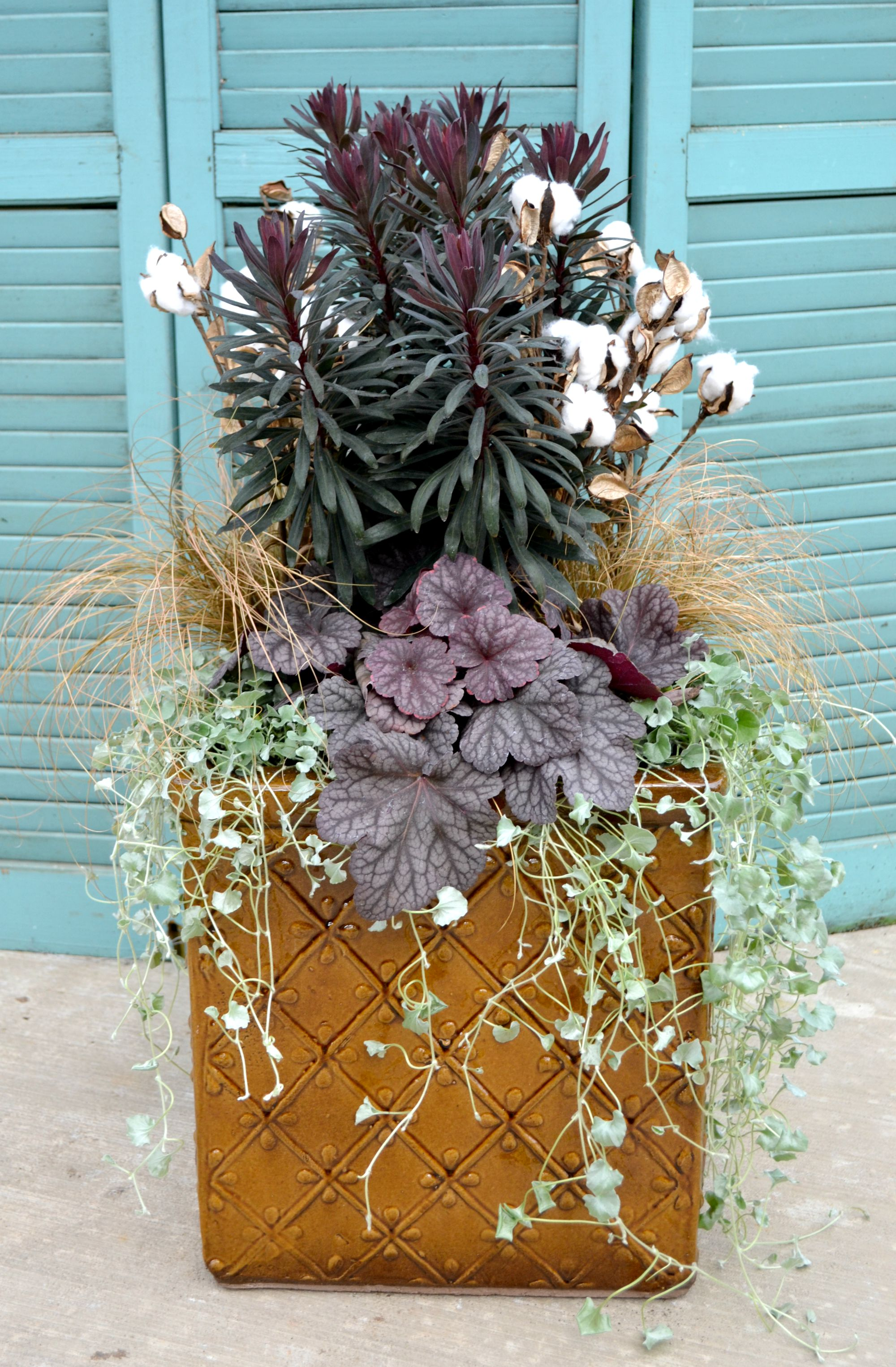 chocolate cotton fall container 1