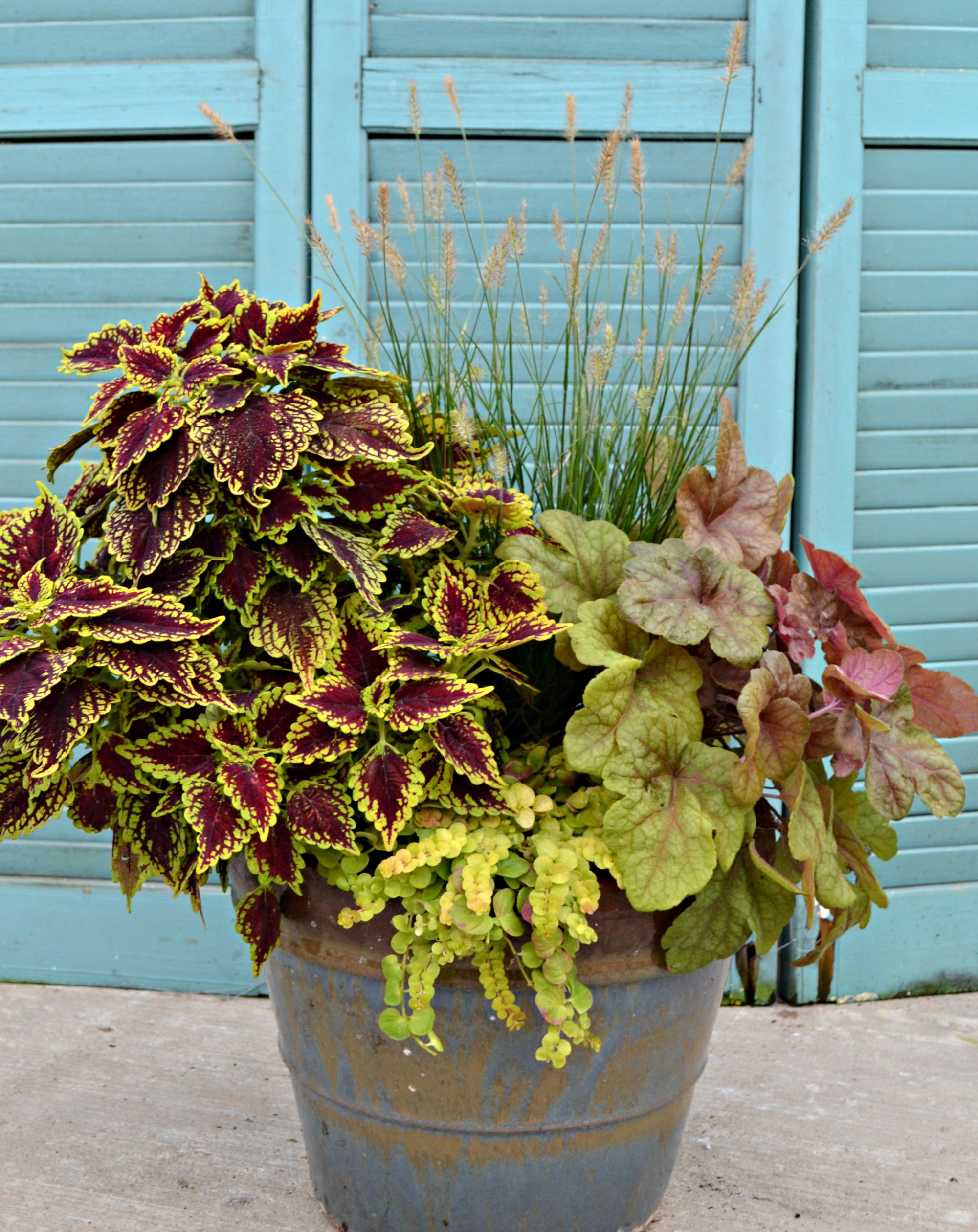 crimson and gold fall container 1