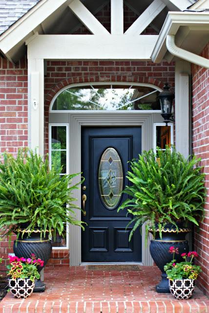 entrance ferns