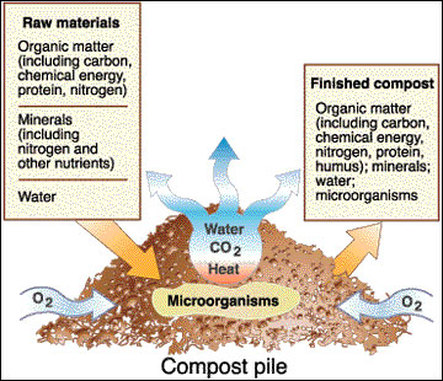 compost diagram